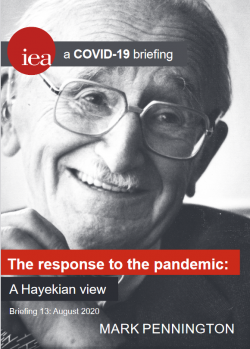 The response to the pandemic: A Hayekian view
